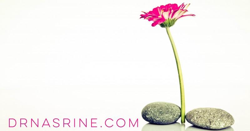 Staying Inspired Dr. Nasrine